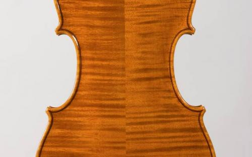 scianame's guarneri violin (1).jpg