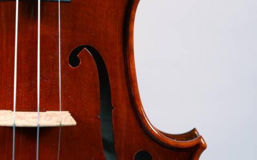 scianame's ornati violin (2).jpg