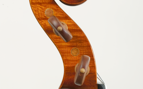 testa violino pisogne 2009.png